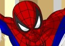Thumbnail of Spiderman Customization