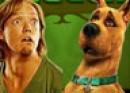 Thumbnail of Shaggy Throws Snacks