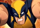 Thumbnail of Wolverine Search And Destroy