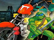 Thumbnail of Turtles Racing
